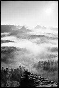 Foggy Forest Black & White I - 50x70 cm Plakat