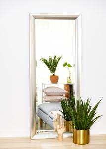 Spejle Hotagen Sølv 50x130 cm