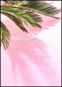 Palm Leaf Plakat