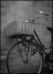 Bicycle Basket Plakat