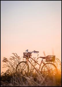 Bike Ride In The Sunset Plakat