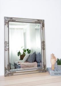 Spejl Bologna Sølv 50x70 cm