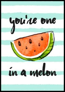 You´re one in a melon Plakat