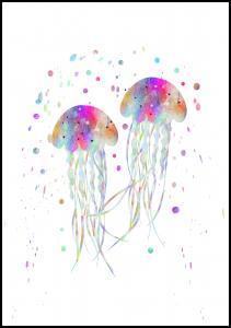 Jellyfishes stingers Plakat