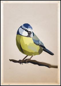Blue tit Plakat