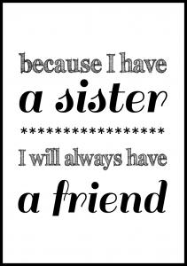 Because i have a sister - Sort Plakat