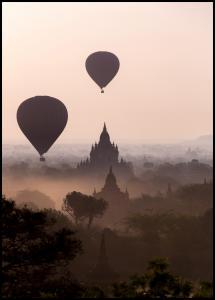Hot Air Balloons Plakat