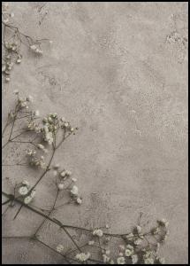 Stone Flowers Plakat