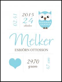 Owl Birth Poster Blue