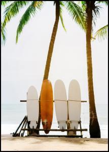 Surf Boards Plakat