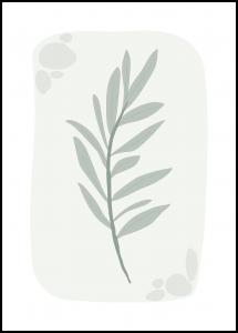 OLIVE Plakat