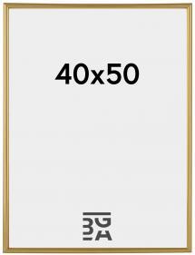 Decoline ramme Guld 40x50 cm