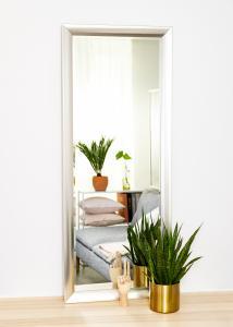 Spejle Hotagen Sølv 60x150 cm