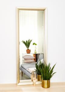 Spejle Olden Sølv 60x150 cm