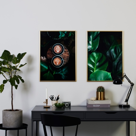 Coffee Date & Monstera Family